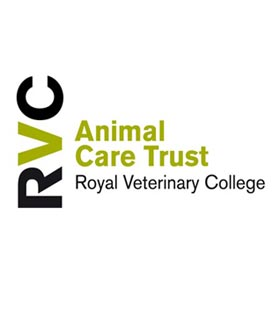Royal Veterinary College Charity Skydiving